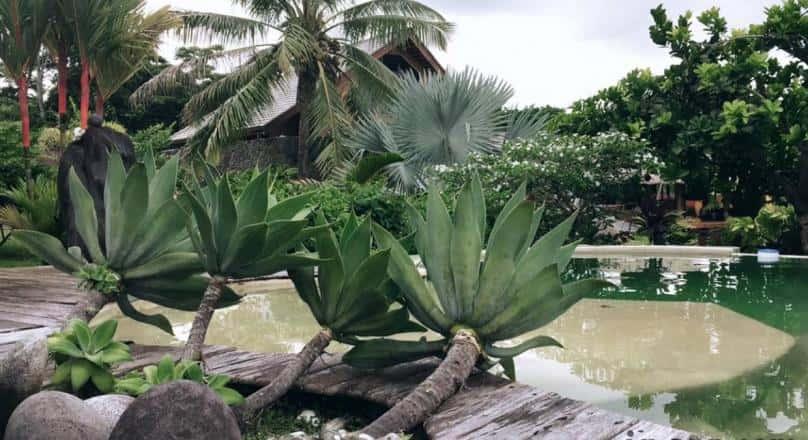 Omati Lodge